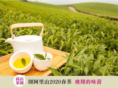 2020阿里山烏龍茶春茶