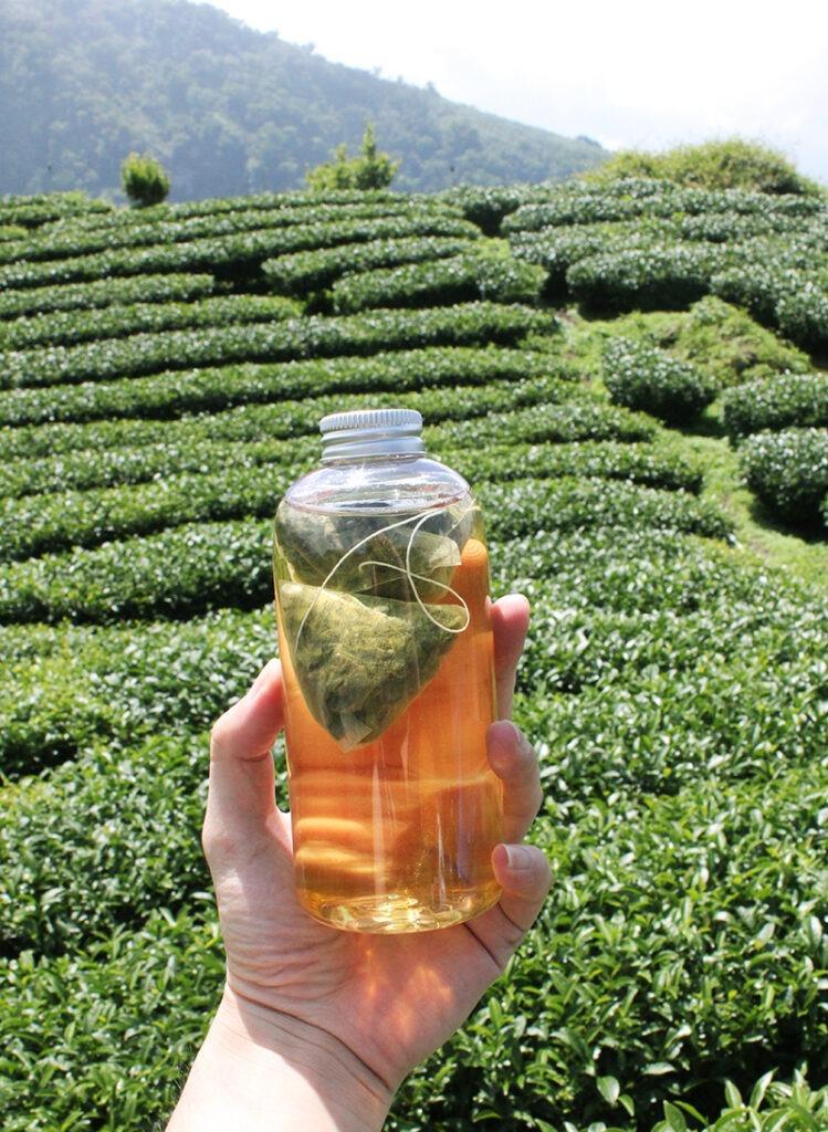台灣好茶-金萱茶,茶葉味道淡雅,較合適喝淡茶的人