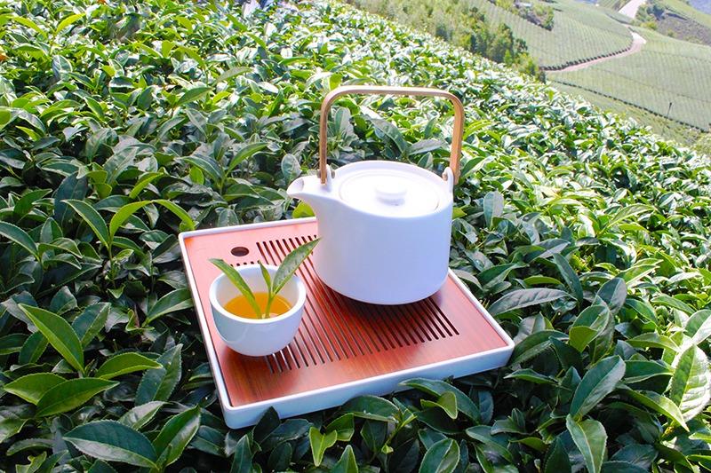 阿里山高山烏龍茶(阿里山冬茶)